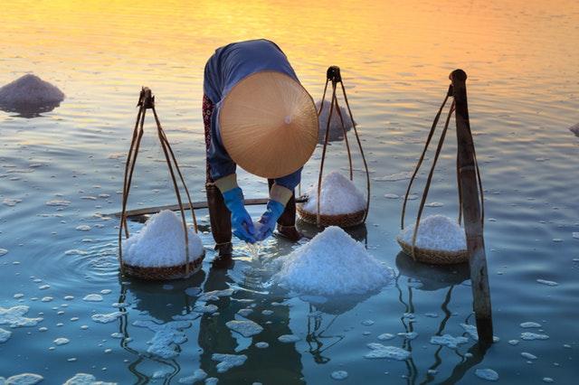 Sběrač mořské soli
